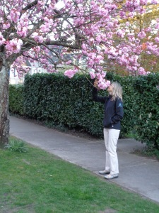 DSC00170 Ute Blossoms